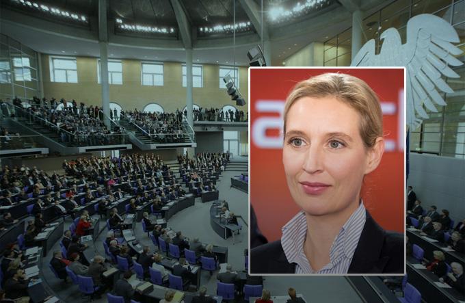 Video: Land wird von Idioten regiert - AfD-Chefin provoziert im Bundestag